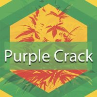 Purple Crack Logo