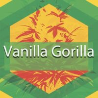 Vanilla Gorilla Logo