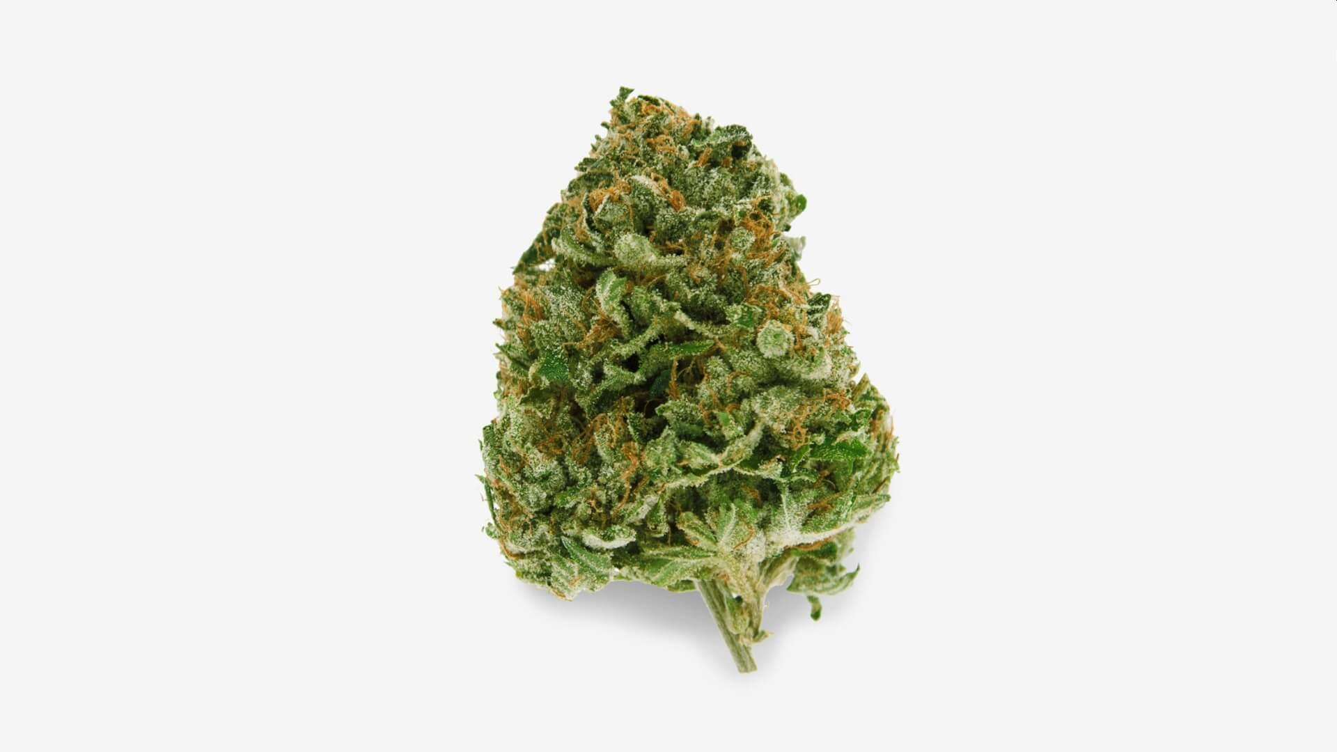 Cresco cannabis flower