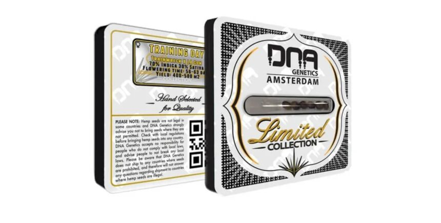 DNA Genetics limited collection seeds