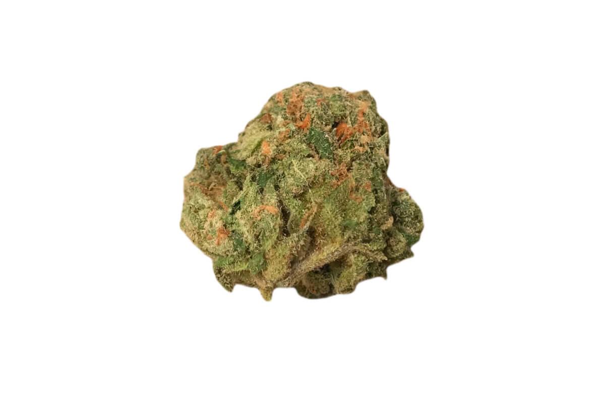 Gorilla Cookies strain photo 3