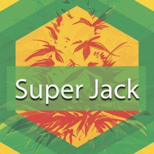 Super Jack, AskGrowers