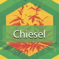 Chiesel Logo