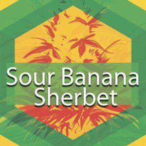Sour Banana Sherbet, AskGrowers