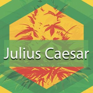 Julius Caesar, AskGrowers
