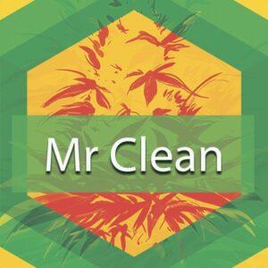 Mr Clean, AskGrowers