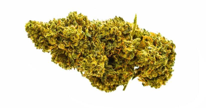 Sweet Tart cannabis image