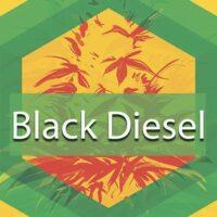 Black Diesel Logo
