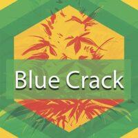 Blue Crack Logo