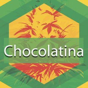 Chocolatina, AskGrowers