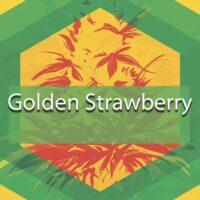Golden Strawberry Logo
