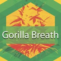 Gorilla Breath Logo