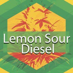 Lemon Sour Diesel, AskGrowers