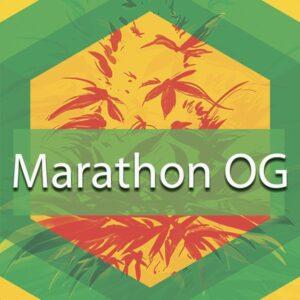 Marathon OG, AskGrowers