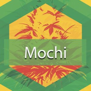 Mochi, AskGrowers