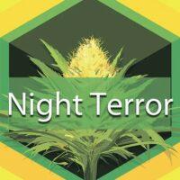 Night Terror Logo