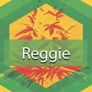 Reggie, AskGrowers