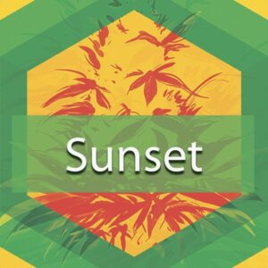 Sunset, AskGrowers