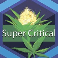 Super Critical Logo