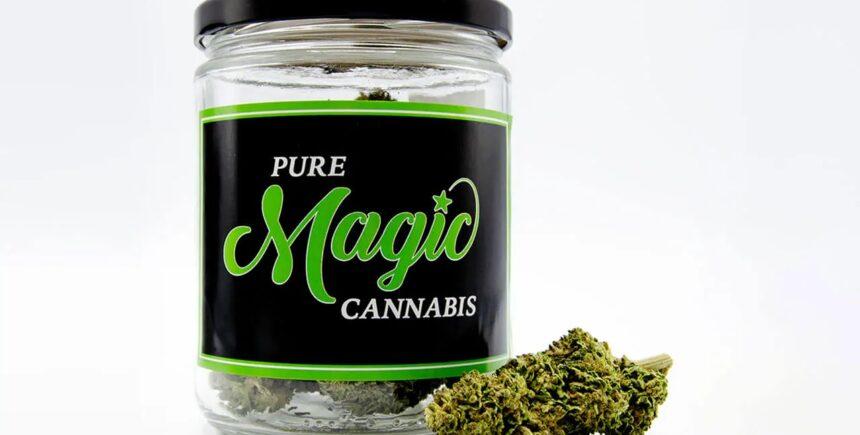 Pure Magic green