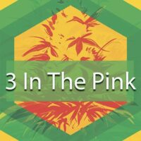 3 In The Pink Logo