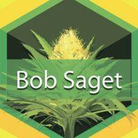 Bob Saget Logo