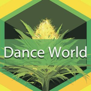 Dance World, AskGrowers