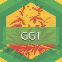 GG1 Logo