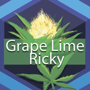 Grape Lime Ricky, AskGrowers