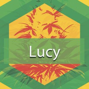 Lucy, AskGrowers