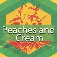 Peaches and Cream Logo