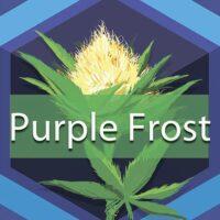 Purple Frost Logo