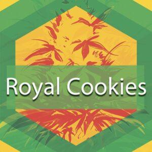 Royal Cookies, AskGrowers