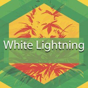 White Lightning, AskGrowers