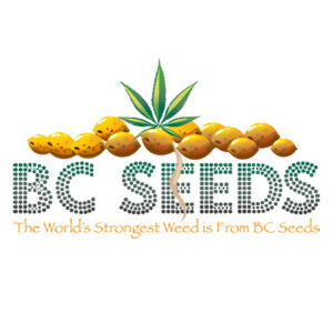 BC Seed Company, AskGrowers