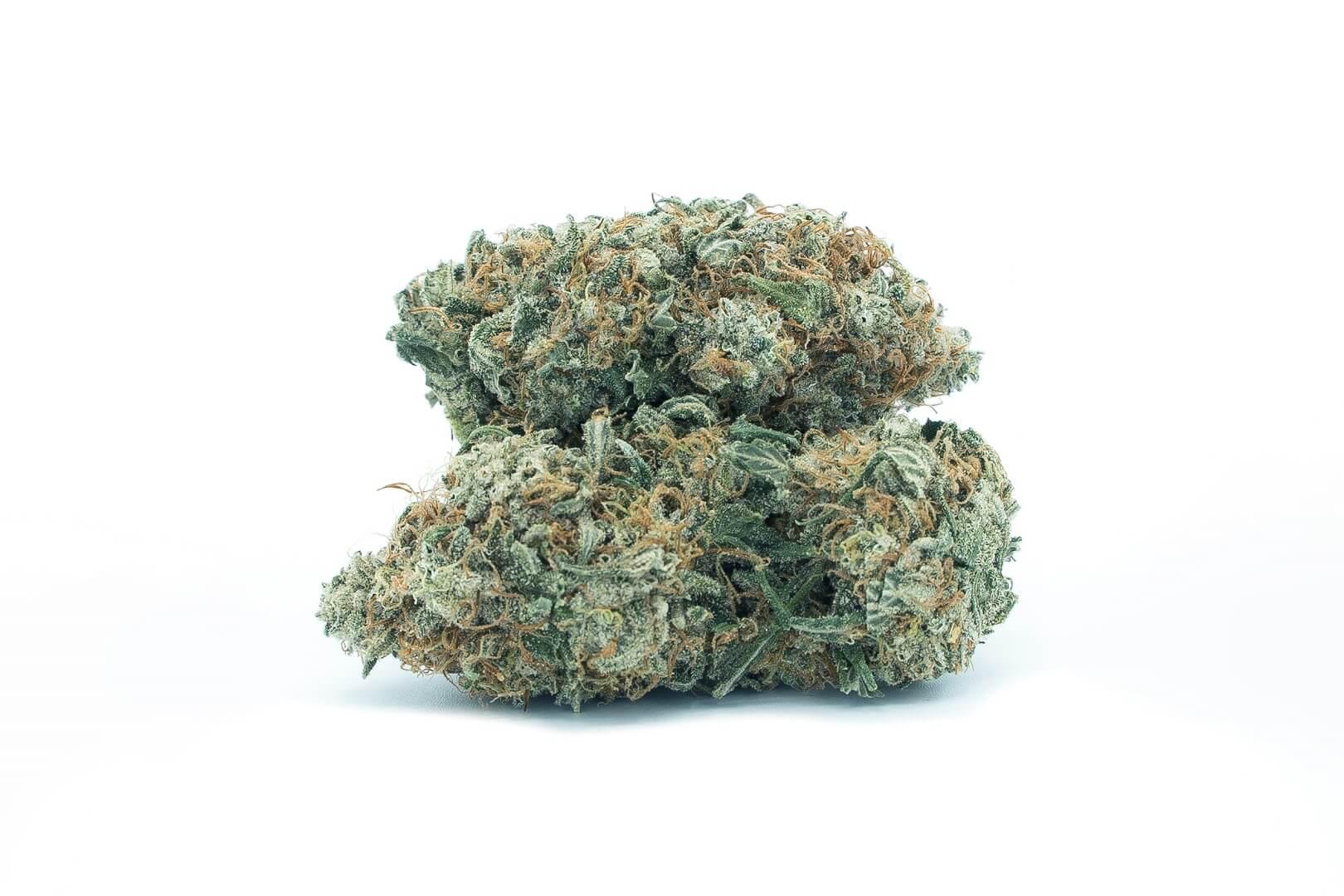 Blue Cheese strain photo 1