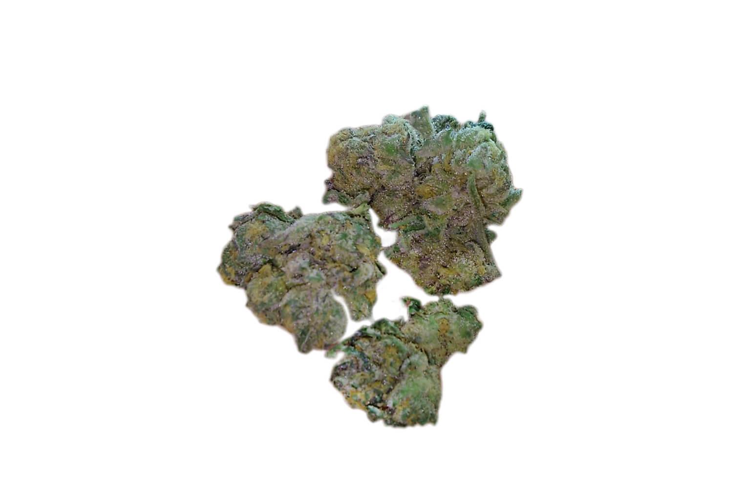 Blue Cookies (Blue GSC) strain photo 2