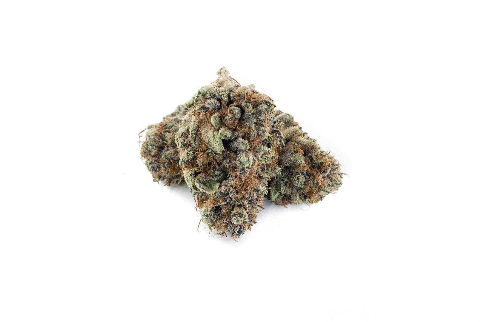 Blueberry Muffin strain photo 2