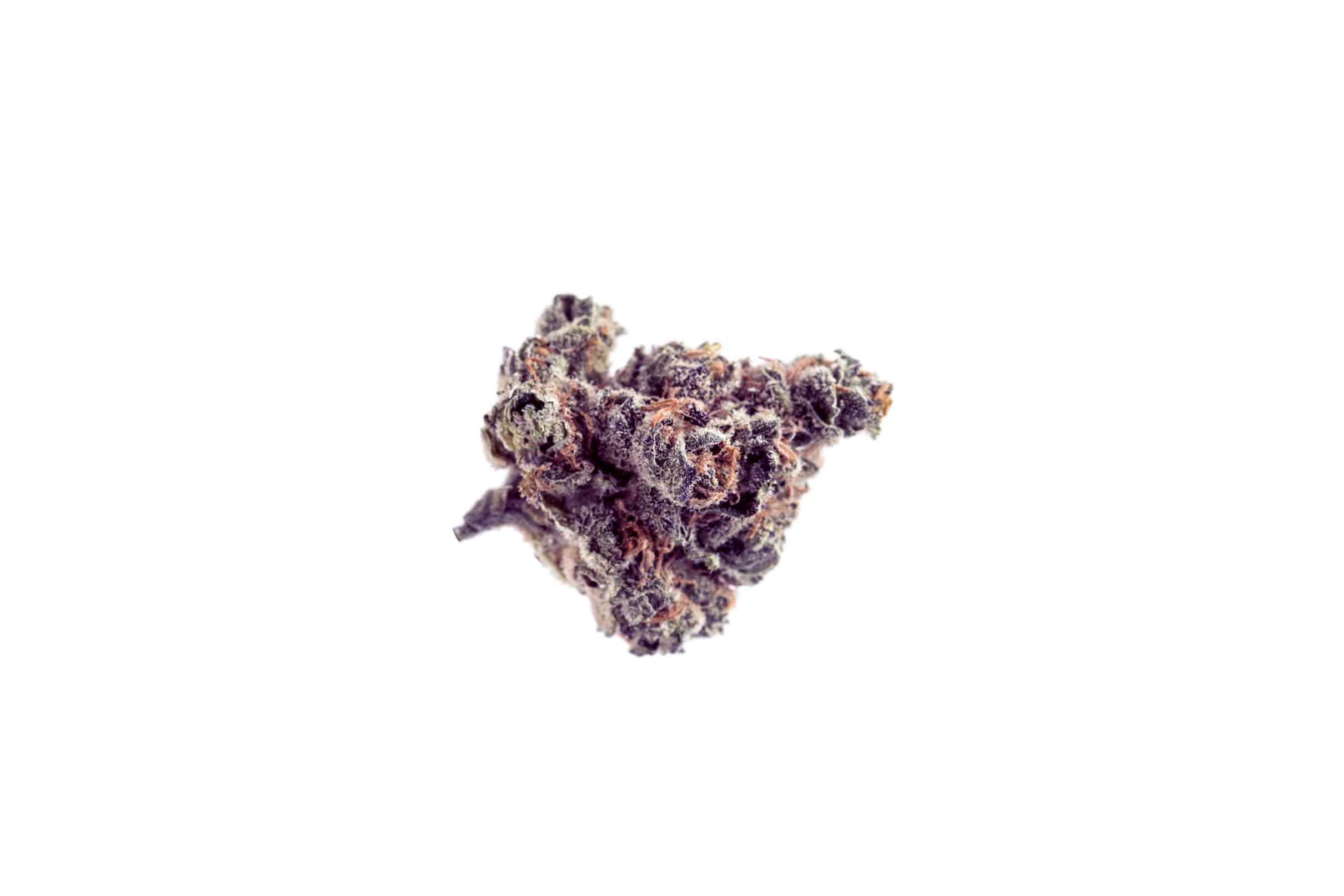 Blueberry Muffin strain photo 1