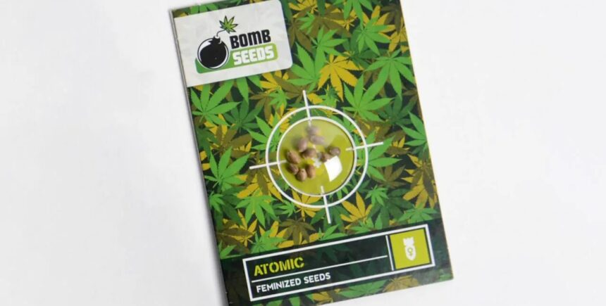 Bomb Seeds product
