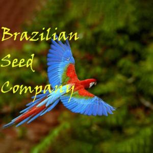 Brazilian Seed Company, AskGrowers