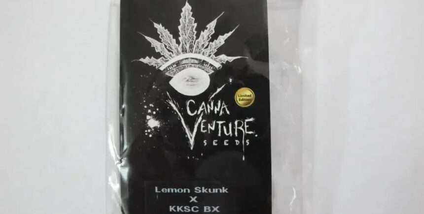 CannaVenture Seeds pack