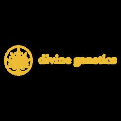 Divine Genetics