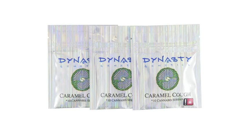 Dynasty Seeds packs