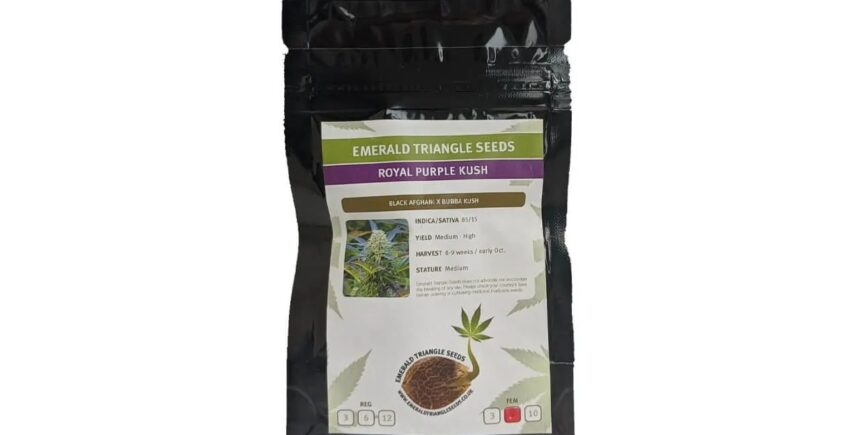 Emerald Triangle Seeds pack