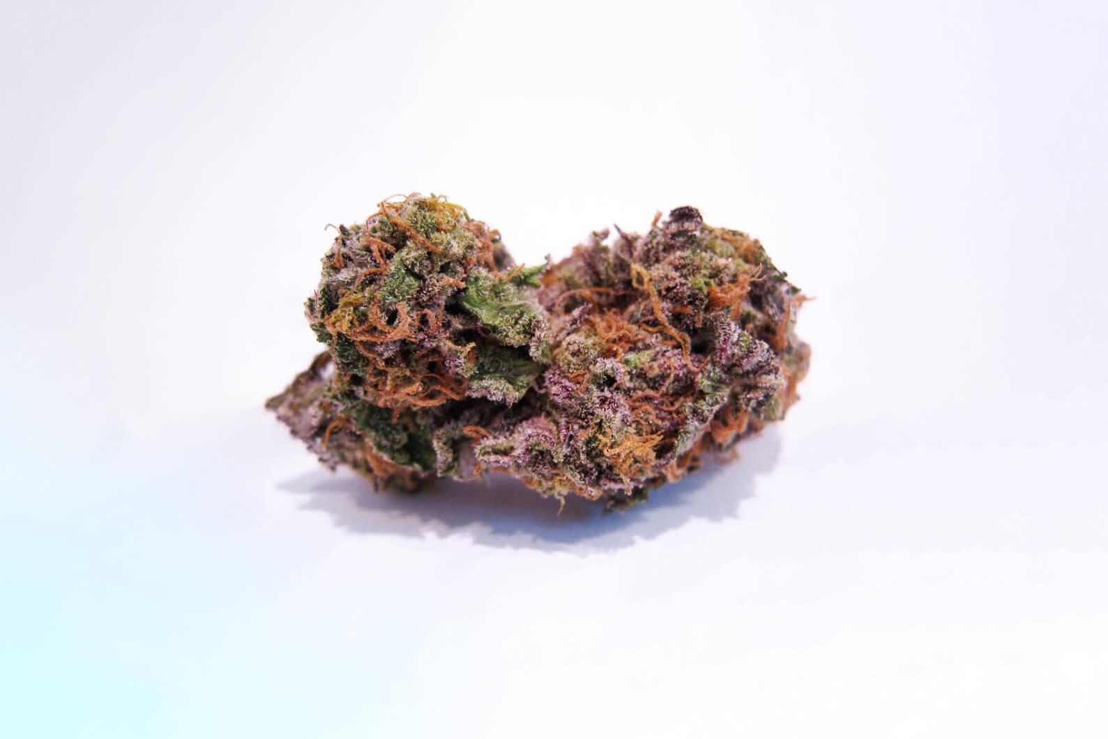 Granddaddy Purple (GDP, Granddaddy Purp) strain photo 2