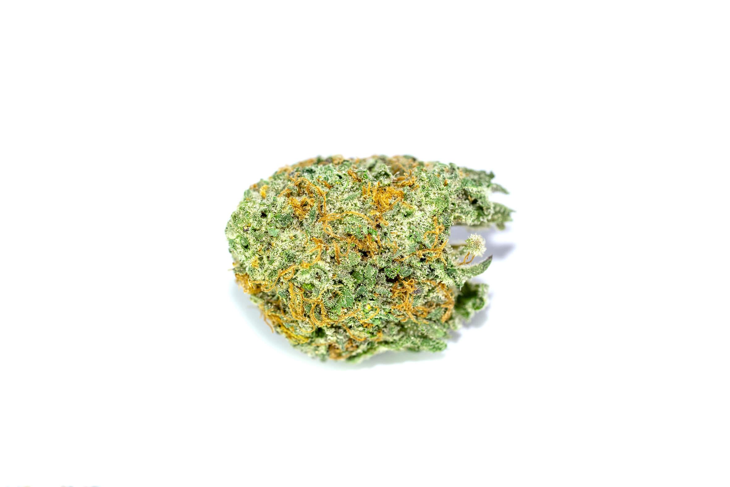 Green Crack strain photo 1