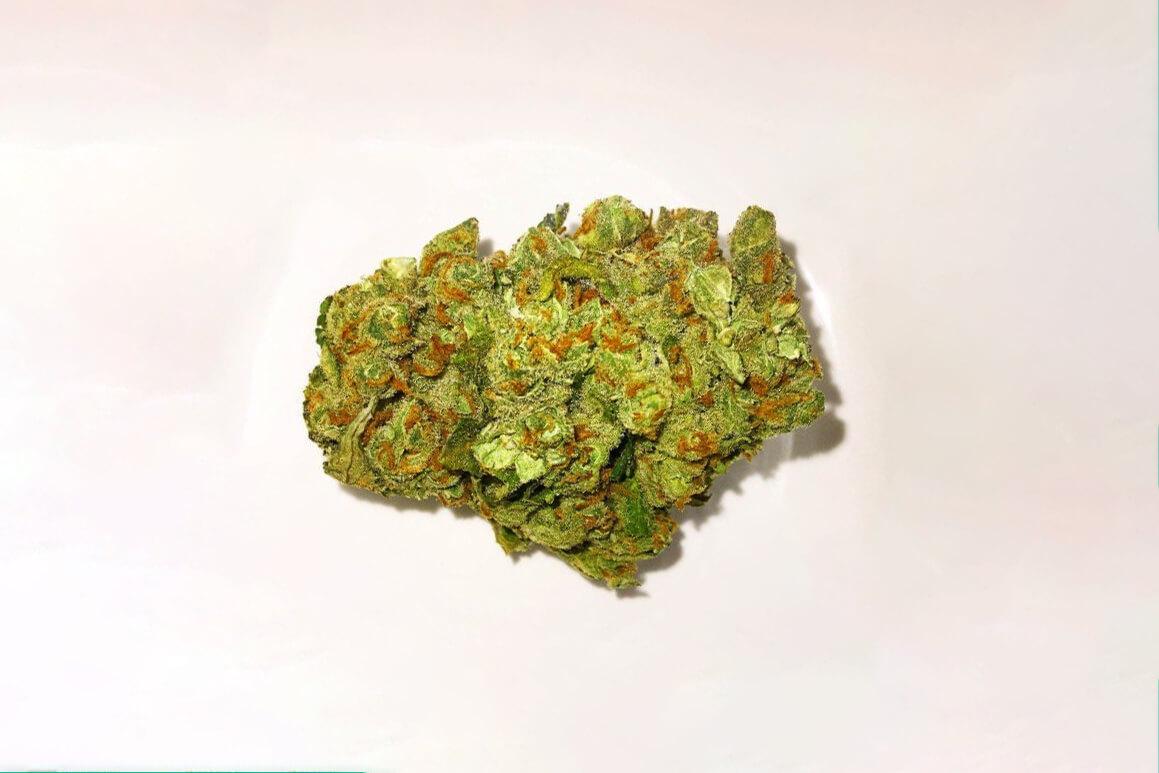 Green Crack strain photo 2