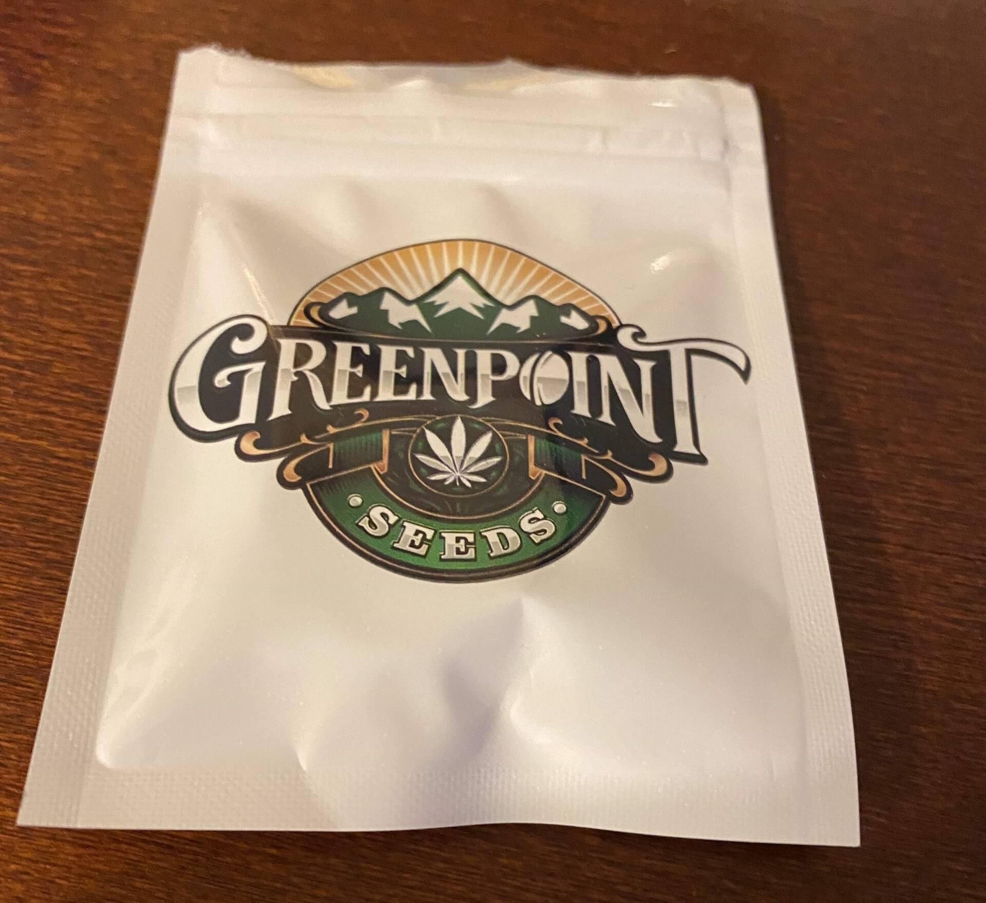 Greenpoint Seeds purple crash