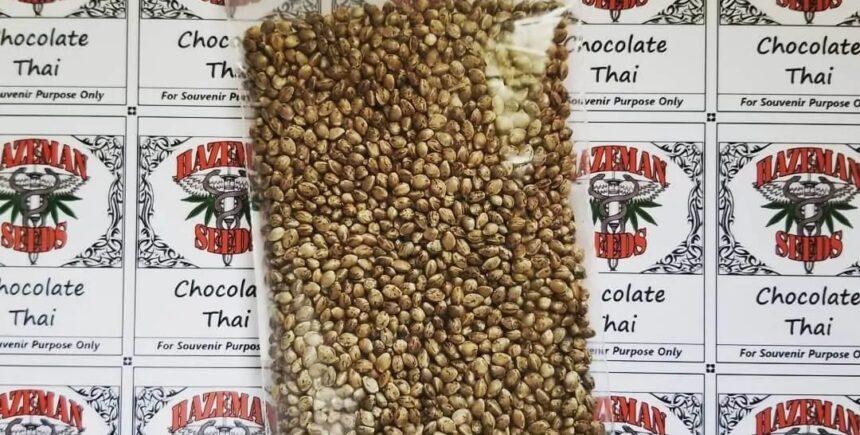 Hazeman Seeds picture